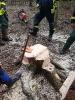 Ausbildung TH Wald